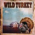 Wild Turkey - Rarest Turkey  lp  reissue
