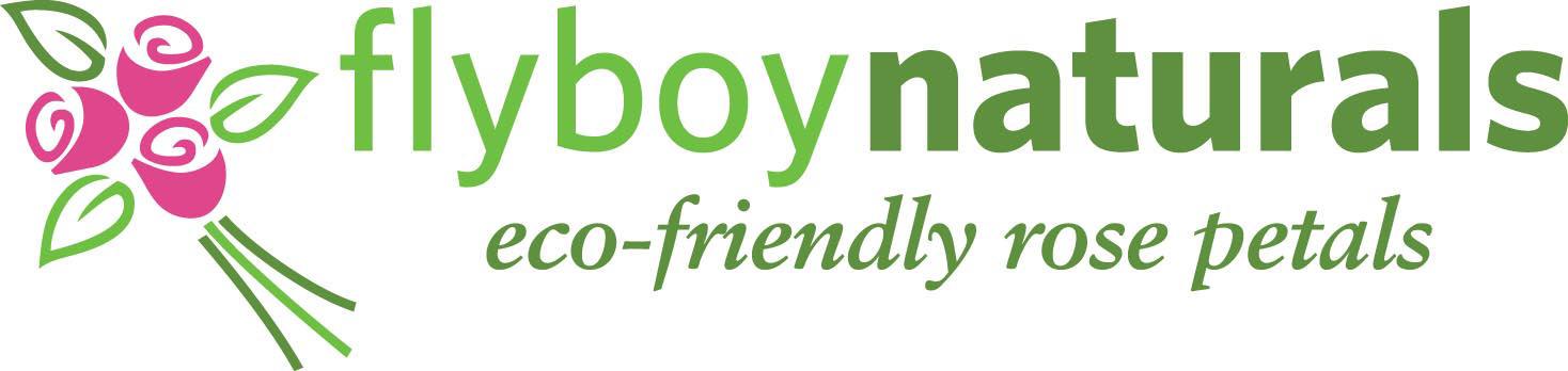 2010.flyboylogo-final.jpg