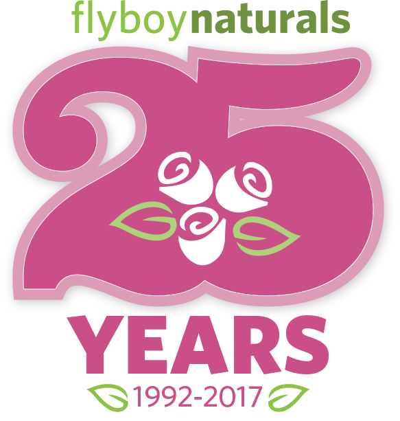 flyboy-25thanniversary-.png
