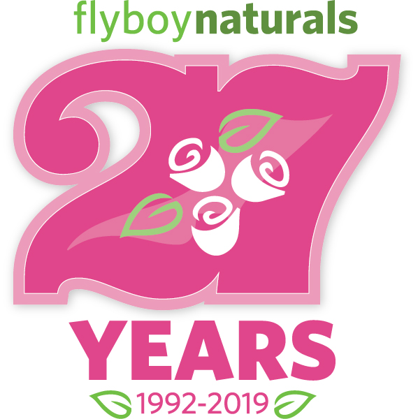 flyboy-27thanniversary-.jpg