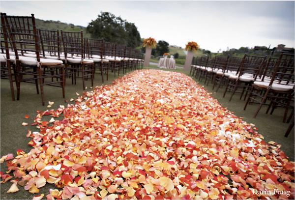 freeze dried petals for fall weddings flyboy naturals rose petals