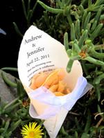Andy & Jen's Wedding Cones