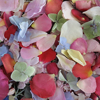 Assorted FLOWER Preserved Freeze Dried Petal Blend