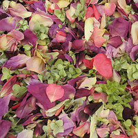 Assorted Flower Petals Buy 30 Cups get 30 FREE