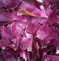 """""""BB"""" Dark Fuchsia Preserved Freeze Dried Peony Petals"""
