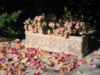 Arrangement with Petals