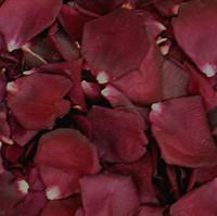 Crimson Bouquet Preserved Freeze Dried Rose Petals