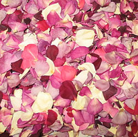 Kara's Blend Preserved Freeze Dried Rose Petals Fragrant