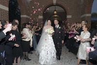 Brewer-Rovero Wedding Rose Petals