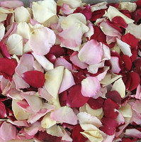 Bridal Bliss Preserved Freeze Dried Rose Petals Weddings