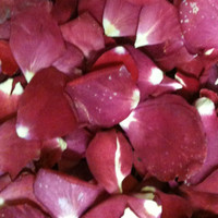 """BB"" Falling In Love Preserved Freeze Dried Rose Petals"