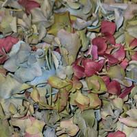9 Hydrangea Preserved Freeze Dried Hydrangea Petals