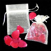 Sheer Sachet Bag