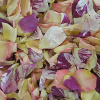 Spring Blend Preserved Freeze Dried Rose Petals