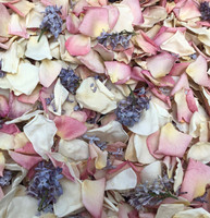 Unique Flower Petals & Blends: Spring Fling Blend from Flyboy Naturals Rose Petals.  Ivory & Pinky Peachy rose petals blended with Lavender to periwinkle lilac petals.  Freeze-dried, eco-friendly, bio-degradable, non-staining & not slippery. ALL NATURAL!