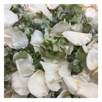 Irish Blend Preserved Freeze Dried Rose & Hydrangea Petals