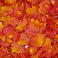 Living Easy Preserved Freeze Dried Rose Petals-LIMITED EDITION