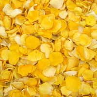 Summer Sun Preserved Freeze Dried Petite Rose Petals