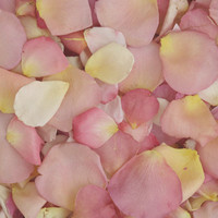 Pretty Pastel Preserved Freeze Dried Rose Petals
