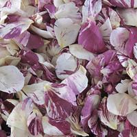 Raspberry Swirl Preserved Freeze Dried Rose Petals