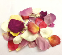 One cup assorted colors of eco-friendly rose petals