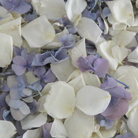 Something Blue Blend Preserved Freeze Dried Rose & Hydrangea Petals
