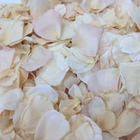 Shabby Chic blend of Eco-friendly rose petals. New blend for November 2014!