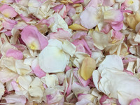 overstock assorted pastels from Flyboy Naturals Rose Petals