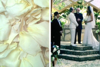 Flyboy Naturals freeze dried rose petals were used for the wedding scene in the pilot of the new show Lucifer on Fox! A custom blend of Bridal White Rose Petals & Champange Rose Petals were used in the wedding scene