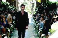 Flyboy Naturals freeze dried rose petals were used for the wedding scene in the pilot of the new show Lucifer on Fox! Lucifer walks thru the custom blend of Flyboy Naturals Bridal White Rose Petals & Champange Rose Petals we created for the wedding scene