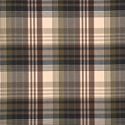 "FD016/584.A127 Ancient Tartan Charcoal/Gold by Mulberry Fabric - Wool 100% United Kingdom Medium H"" -, V: 9.85 inches 59.1 inches  - Fabric Carolina -  Mulberry"