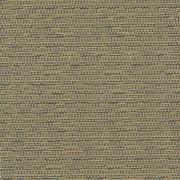 Asina Travertine by Kasmir Fabric 1416 100% Polyester TURKEY 25,000 Wyzenbeek Double Rubs H: N/A, V:N/A 54 - 55 - Fabric Carolina - Kasmir