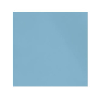 ORGANIC!  Sky Blue:  Brushed French Terry, GOTS