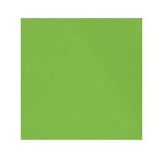 ORGANIC!  Frog Green:  Brushed French Terry, GOTS