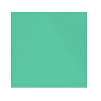 ORGANIC!  Mint:  Brushed French Terry, GOTS