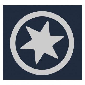 Big Star: Reflective Iron On