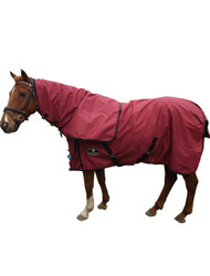 Waterproof_No_Fill_Burgundy_Horse_Rug