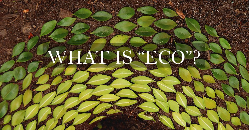 What Is Eco >> What Is Eco Celtic Sustainables