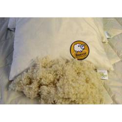 Baavet Pillow