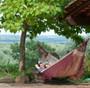 Bossanova Bordeaux Red Family hammock suspended from trees.
