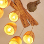 The wooden light fitting was varnished with Auro 261 (wood was primed with Auro 117).