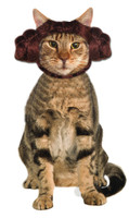 Star wars animal costume