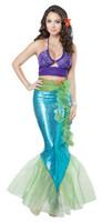 Mermaid costume online