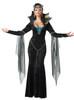 Evil sorceress womens costume