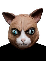 Funny cat mask