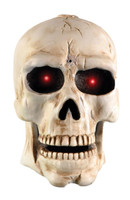novelty skull