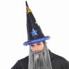 Buy wizard hat