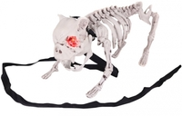 ANIMATED BARKING SKELETON DOG