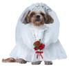 Dog costumes sydney