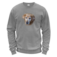 Hango Retriever Sweater